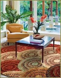 Home Goods Rugs Rug Lovely Home Goods Rugs 8 10 Rugs And Rugs Greenville Sc