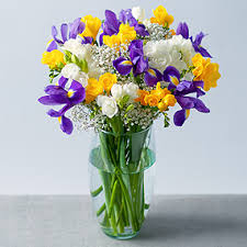 image of spring flowers spring flowers flowers by post