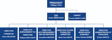 Cci Martinique Ccim Fiches Pratiques Pour Vos Formalités Cci Martinique Ccim Organigramme Général