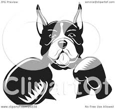 boxer dog yard art clipart illustration of a boxer dog with cropped ears fighting