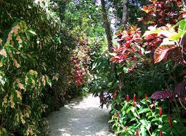 colorful flower gardens queen elizabeth ii botanic park wikipedia