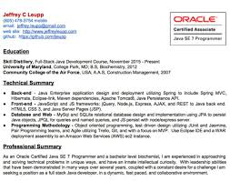 entry level java developer resume sample resume senior java developer resume wonderful java developer