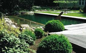 Backyard Swimming Ponds - backyard swimming pools and small ponds beautiful backyard ideas