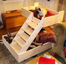 Doggie Bunk Beds How To Build A Bunk Bed For Your Pets Bunk Bed Bed Pallets