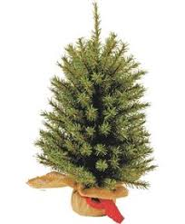 vermont white spruce artificial christmas tree the vermont white