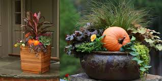Outdoor Container Gardening Ideas Bakers Garden Center Fabulous Fall Container Gardening Ideas