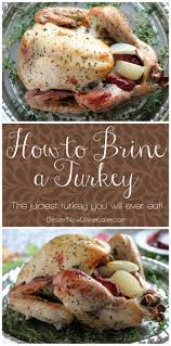 cooking turkey night before thanksgiving 329 best images about turkey on pinterest