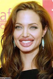 biography angelina jolie book human body parts pictures freaking news