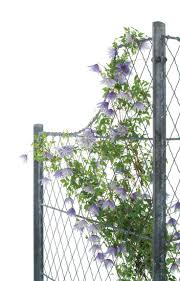 34 best garden trellis lattice fencing images on pinterest