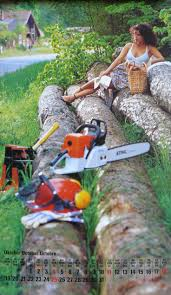 131 best stihl images on pinterest chain saw lumberjacks and