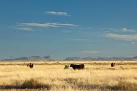 quebec ranch u2013 king land u0026 water
