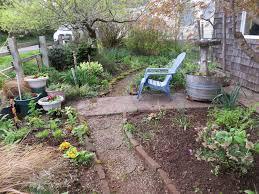 Mulching Vegetable Garden by Enclosed Vegetable Garden Tangly Cottage Gardening Journal