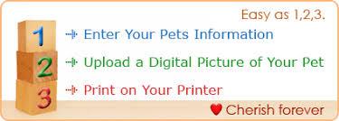 go pet certificates