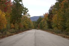 free picture country road forest road autumn season trees