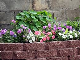cheap flower simple and cheap flower bed edging ideas bitdigest design