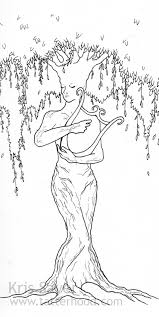 weeping willow tree tattoos designs