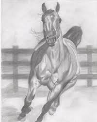 pencil sketches of horses running a really nice horse sketch