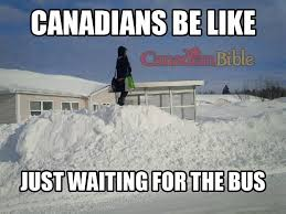 Canada Snow Meme - canadian problem just waiting for the bus canada pinterest