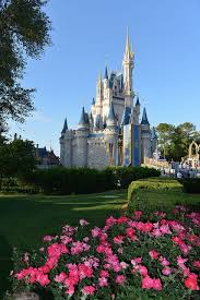 Florida travel pony images 88 best destinations images hotel prices orlando jpg