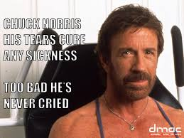 Chuck Norris Memes - 30 chuck norris facts you have to read