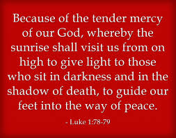 Scriptures Of Comfort And Peace Top 7 Bible Verses About Tenderness