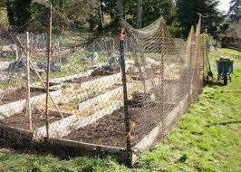 Deer Proof Fence For Vegetable Garden Really Rose Building Fences