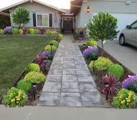 low maintenance plants for front garden landscaping ideas of house