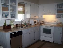 Painting Kitchen Cabinets Ideas by Modren Blue Painted Kitchen Cabinets Furniture With And Beige