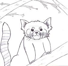 free to download red panda coloring pages 66 on picture coloring