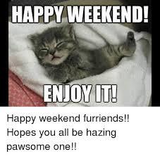 Happy Weekend Meme - happy weekend enjoy it happy weekend furriends hopes you all