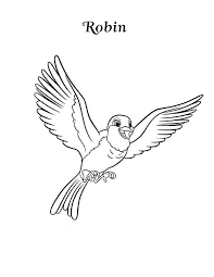 happy robin bird coloring download u0026 print coloring