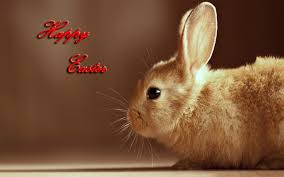 easter wallpaper for windows 7 free download easter 2013 hd wallpapers for android tablets tips