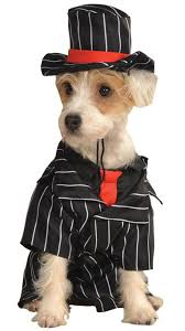 Gangster Costumes Halloween Gangster Pet Costume Pet Costumes