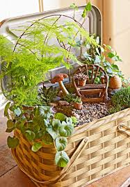 Planter Garden Ideas Create A Magical Miniature Garden Midwest Living