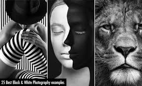 best black 40 best black and white photography examples from top