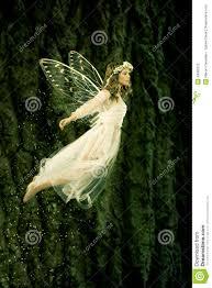 flying fairy stock photo image 43062575