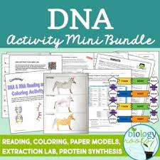 dna activity package by biology roots teachers pay teachers