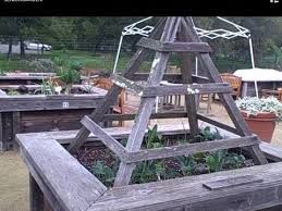 Raised Bed Gardening Accessible Raised Bed Garden For Seniors Allow Them To Grow Food