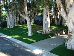 photos artificial grass artificial turf synthetic grass