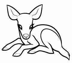 baby deer coloring pages kids adults coloring