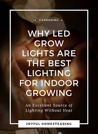 best grow lights for vegetables led grow lights basics led grow lights led grow and grow lights