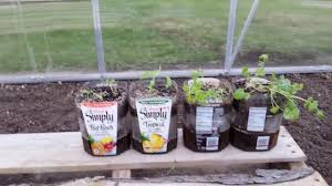 Self Watering Planters Diy How To Make Self Watering Planters Recycle Trash Youtube