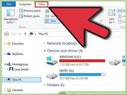 Harddisk Vira How To Remove Autorun Virus From Disk Drives With Pictures