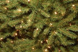 amazon com national tree 7 5 foot dunhill fir tree with 750 clear