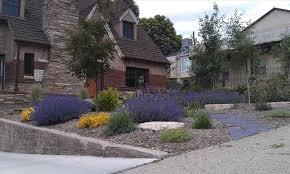 Grassless Backyard Ideas Yard Ideas Xeriscape Ideas Images On Pinterest Landscaping Front