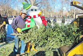 recycle your christmas tree at mulchfest 2017 inhabitat green