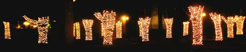 Milwaukee Lights Soul Amp Milwaukee Holiday Christmas Lights Photos Images Pics