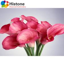 Calla Lily Home Decor by Compare Prices On Calla Lily Painting Online Shopping Buy Low