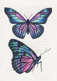 about beautiful purple pink butterfly butterflies temporary
