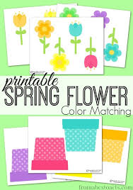 printable spring flowers printable spring flower color matching flower colors winter